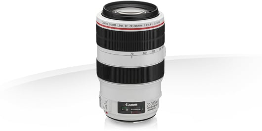 Canon EF 70-300/4,5-5,6L IS USM