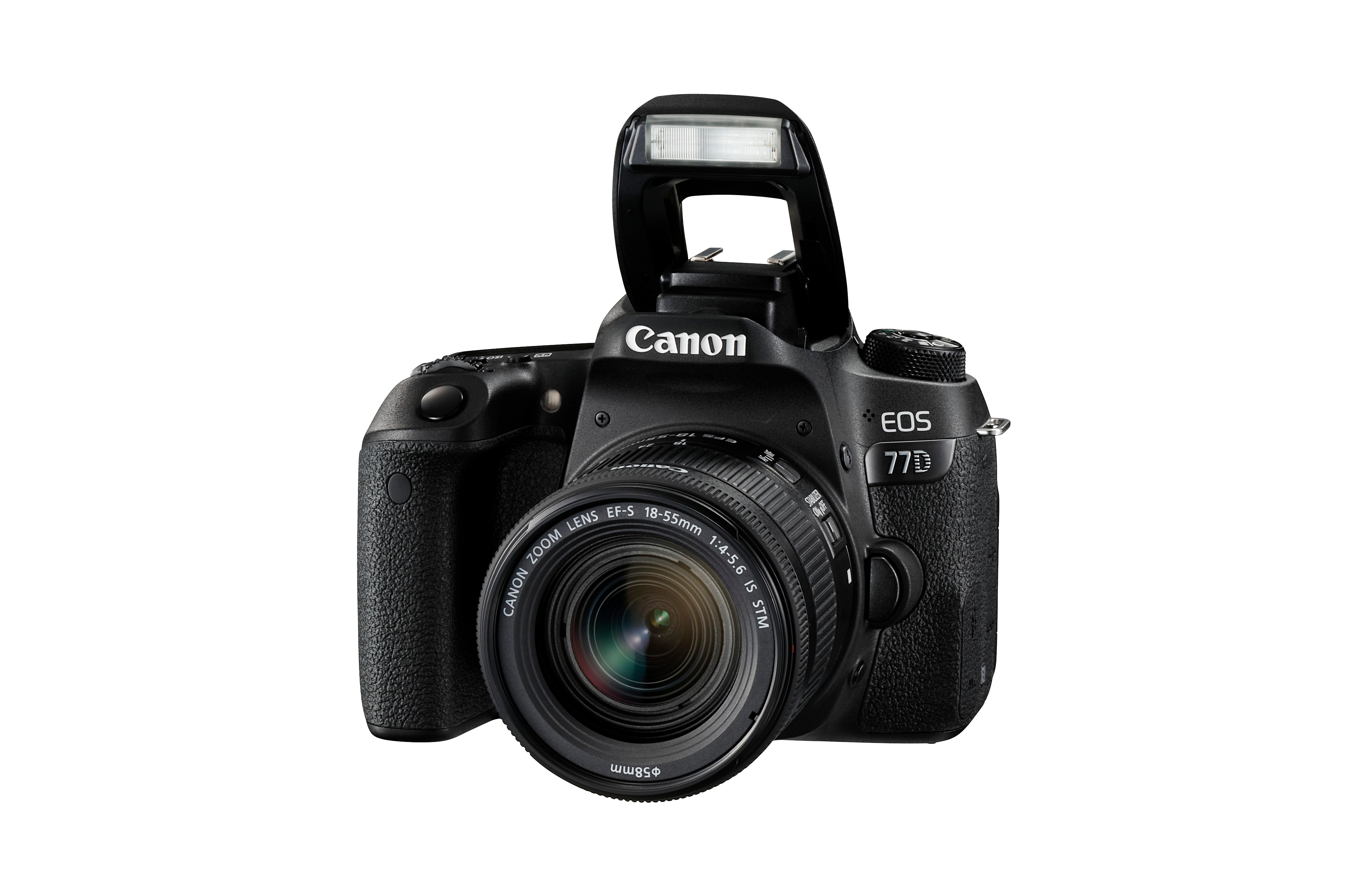 Canon EOS 77D + EF-S 18-55 f/4-5,6 IS STM