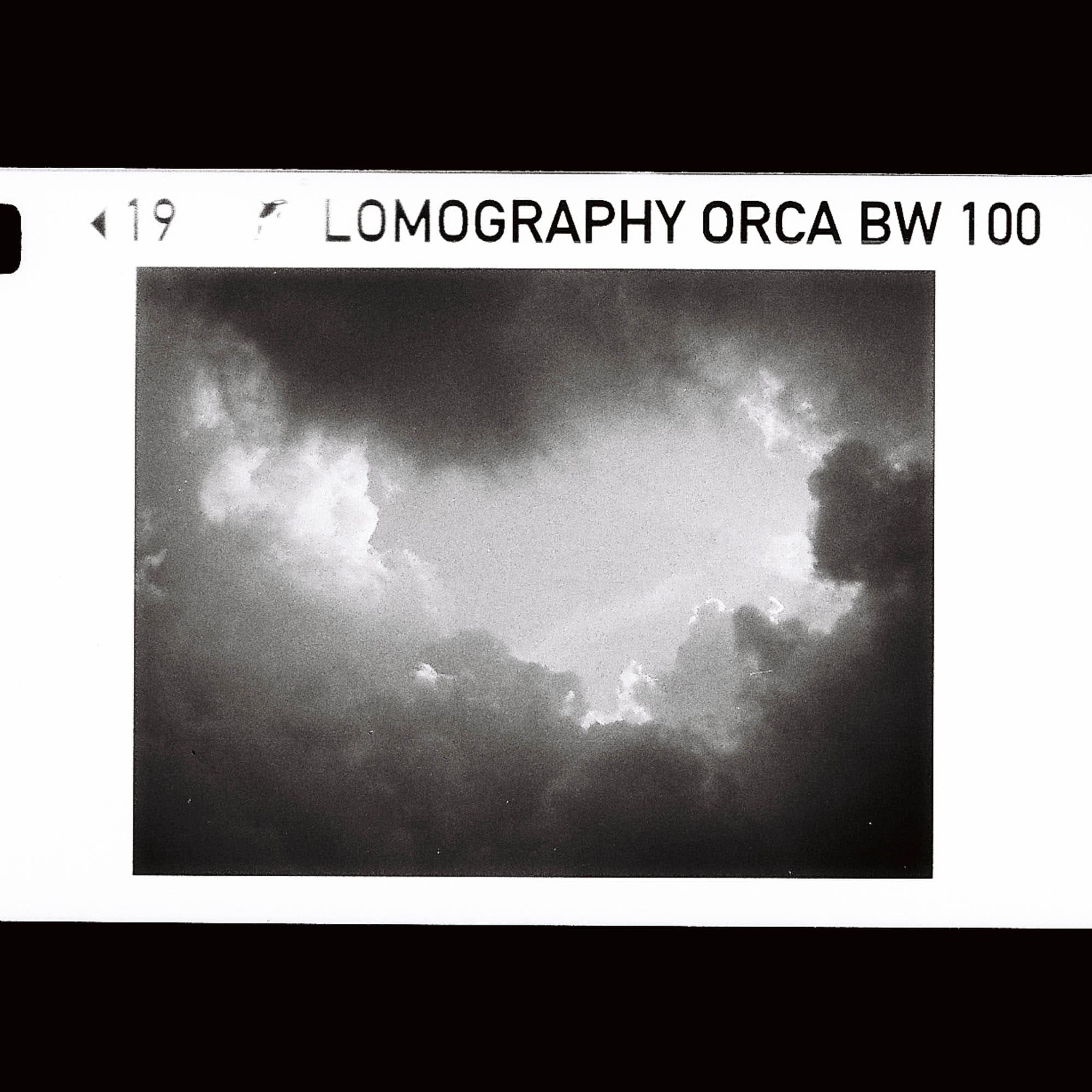 Lomography B&W Orca 100 110-film