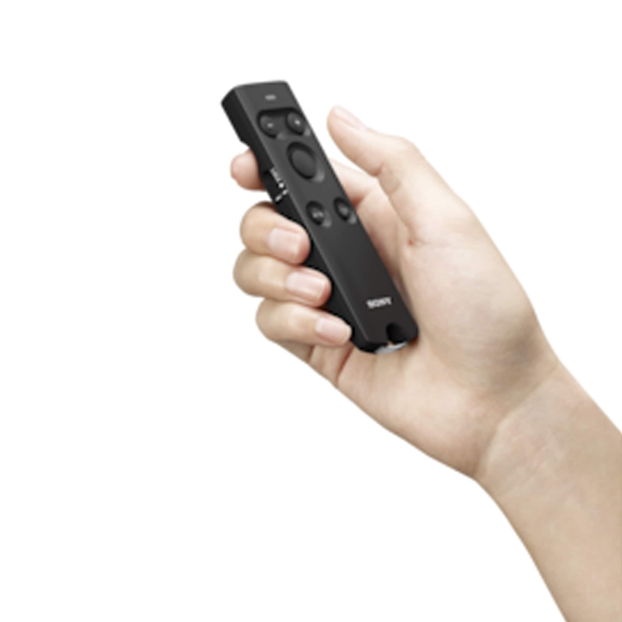 SONY Remote Commander RMT-P1BT