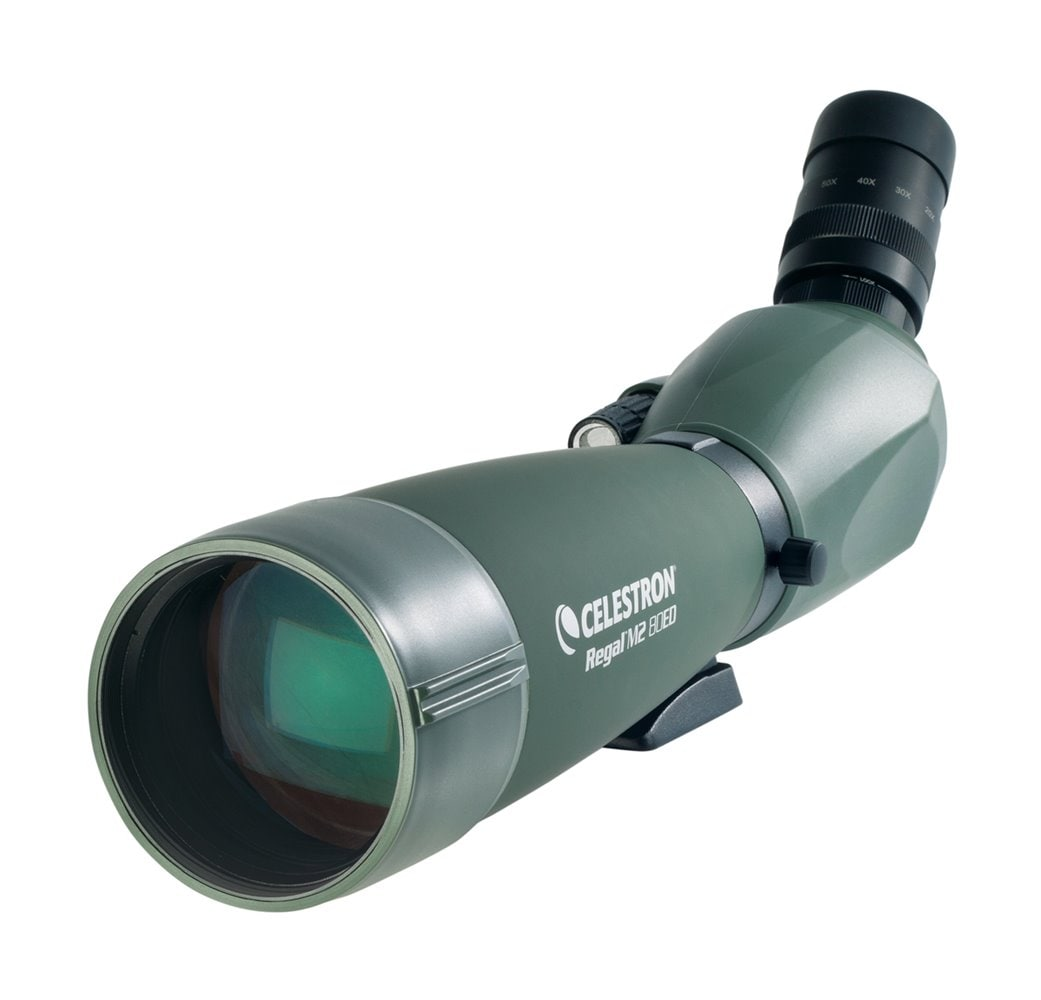Celestron REGAL M2 20-60X80MM